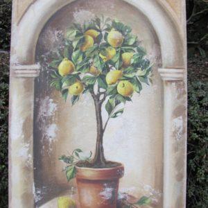 Citronnier I