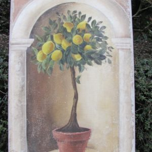 Citronnier II