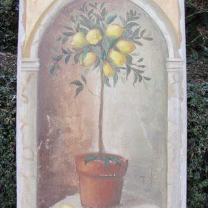 Citronnier III